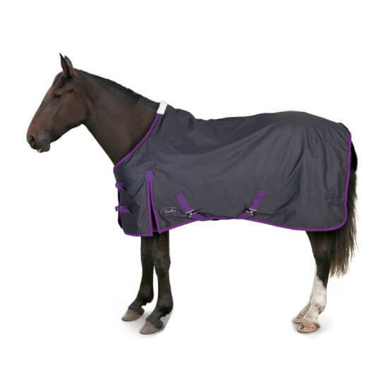 Light Weight Turnout Rug